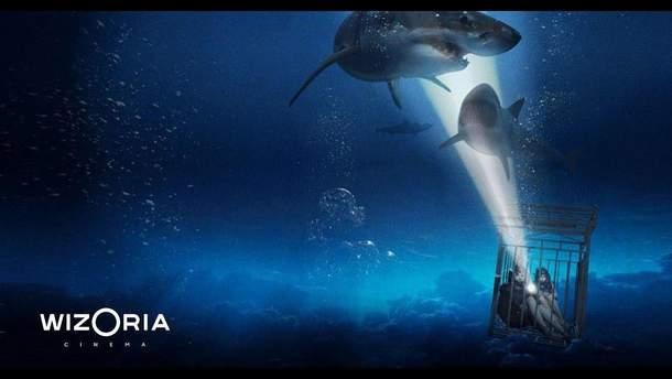 """""""Синяя бездна 2"""": трейлер второй части фильма с кровожадными акулами"""