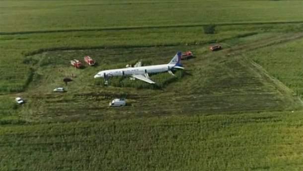 """Весь экипаж самолета, аварийно севшего в поле под Москвой, попал в базу """"Миротворца"""""""