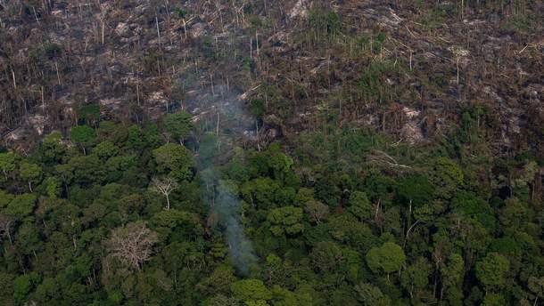 Леса Амазонии продолжают гореть