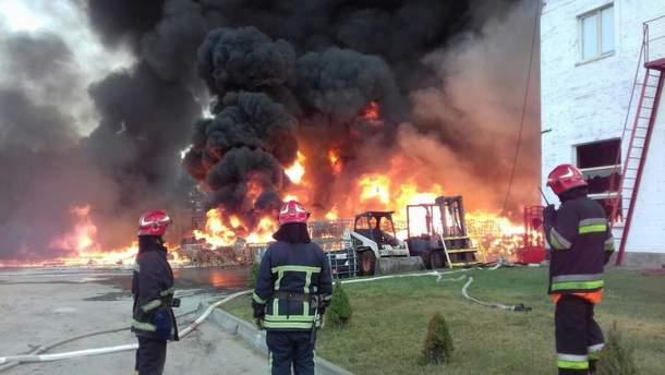 Пожар под Львовом 30 августа 2019 ликвидировали: видео, фото