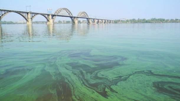 Дніпро вже не реве, він стогне! Річка вмирає.