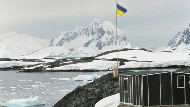 На украинской станции в Антарктиде пройдет марш за права животных
