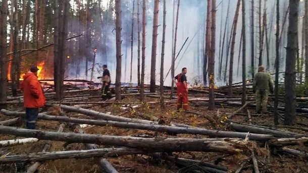 Пожежа за 50 кілометрів від Чорнобиля