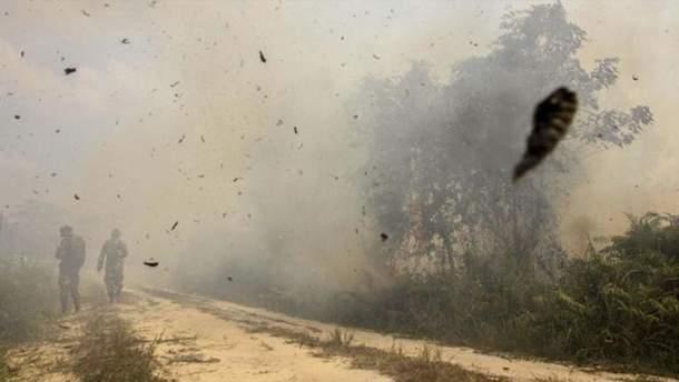 Индонезию накрыл смог после пожаров, которые устраивают бизнесмены