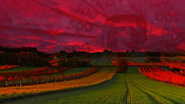 Рынок земли: фермерам – кредиты, олигархам – ограничения