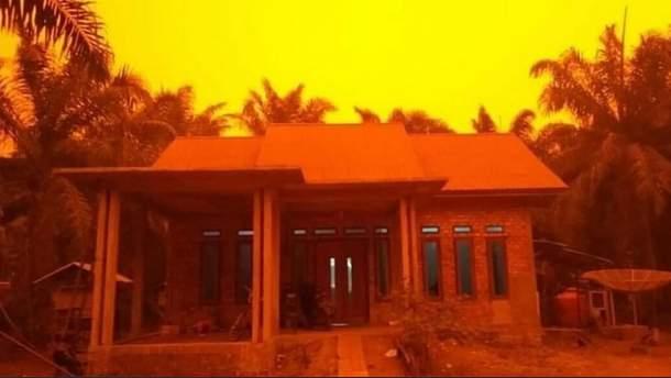 В Індонезії почервоніло небо через масштабні пожежі