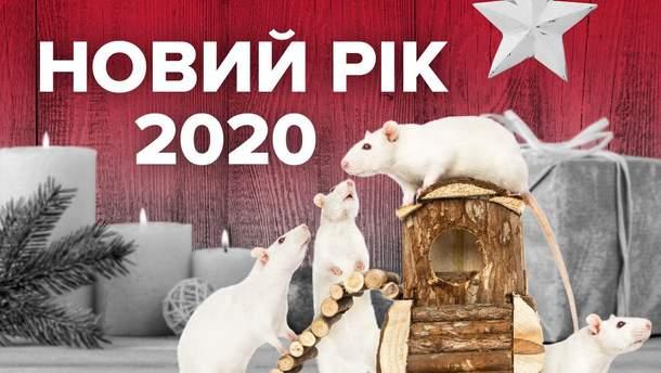 Новий рік Білого Щура 2020: як його правильно зустріти