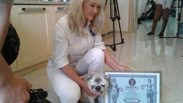 Померла найстаріша собака в Україні – 136 людських років