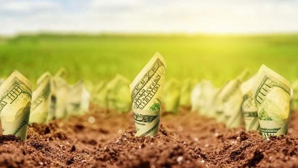 Комітет Ради нашвидкоруч та втиху підтримав альтернативний законопроєкт про ринок землі