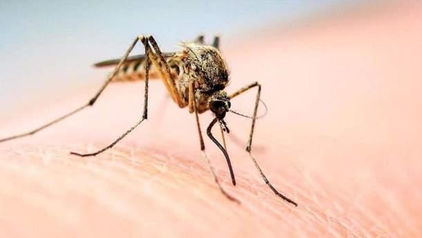 Розробили девайс, що бореться з комарами