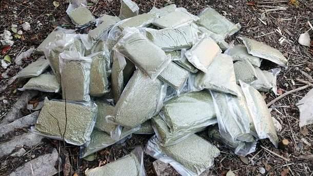 На Донеччині чоловік виростив марихуану на мільйон гривень