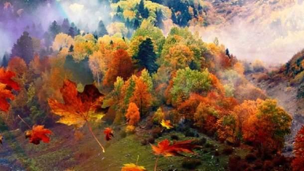Прогноз погоды на 22 октября: сильные туманы окутают Украину, будет тепло