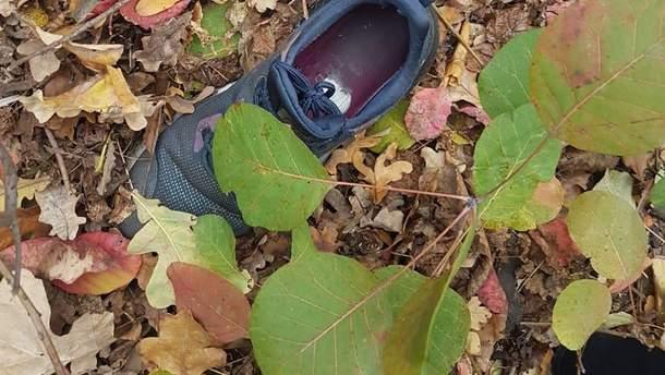 14-річну зниклу дівчину знайшли мертвою в лісосмузі на Одещині