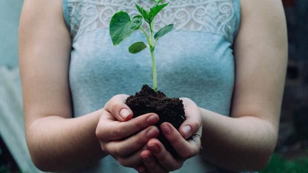 Гнучкого робота навчили рости, подібно до рослин