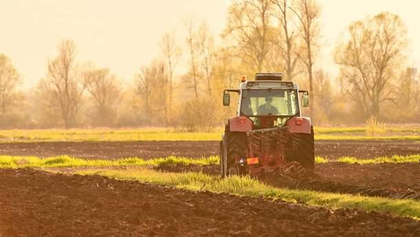 У Мінекономіки озвучили ціну гектара після запровадження ринку землі