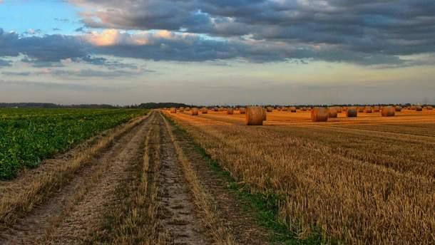 Внедрение рынка земли: что значит и почему большинство фракций против