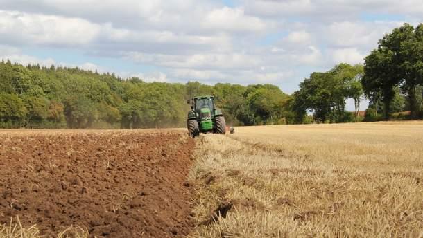 Рынок земли в Украине: что может испортить реформу