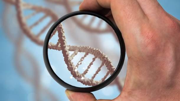 Скільки насправді повинна жити людина: відповідь вчених