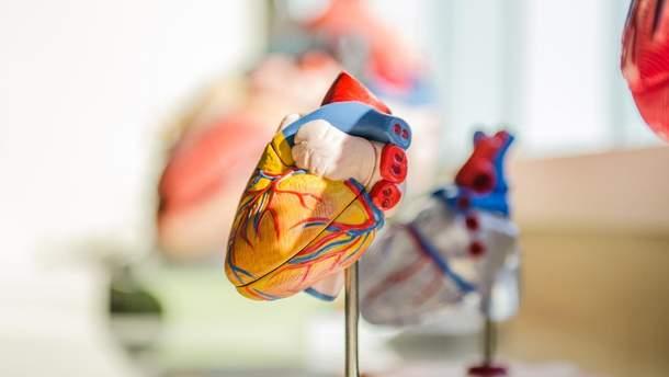 Украинские студенты разработали сервис для борьбы с болезнями сердца