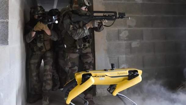Робопса Boston Dynamics на поле боя протестировала французская армия