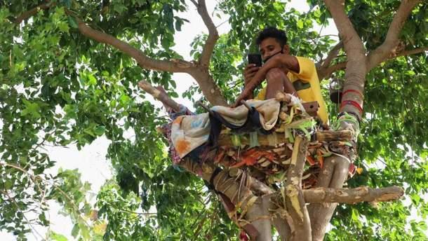 Студент провел 11 дней на дереве, чтобы не заразить коронавирусом родных