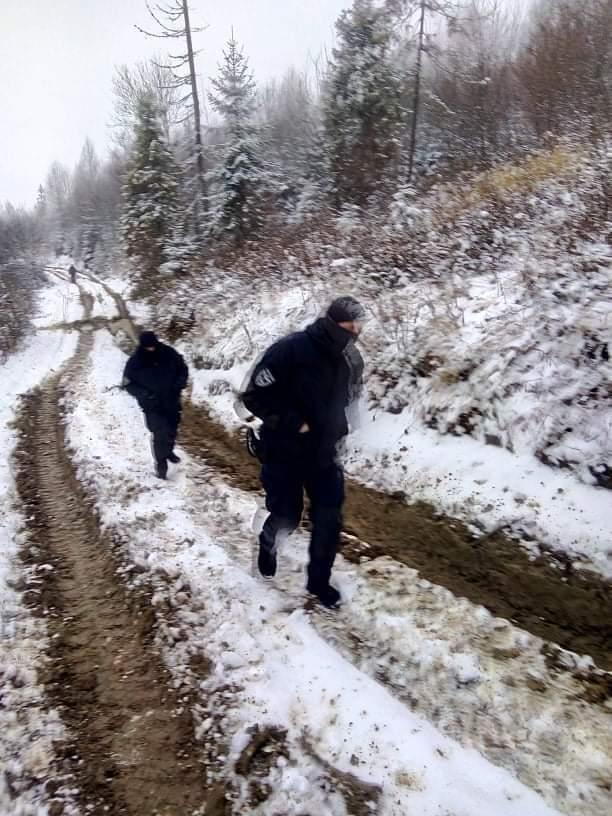 Погрожували розчавити: на Львівщині екоактивіста прив'язали до лісовоза та побили