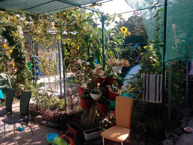 сад дім Ярош Дмитро Ярош