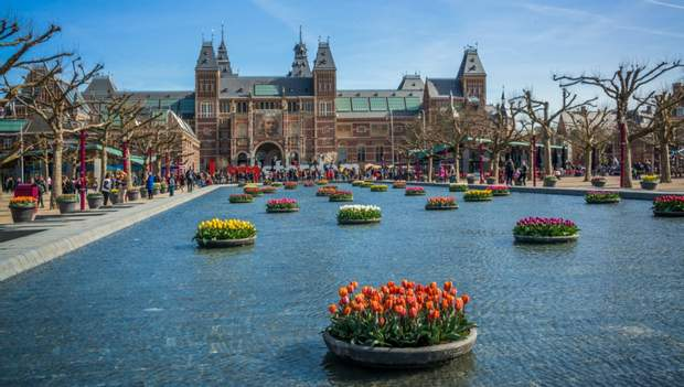 Тюльпани, квіти, Нідерланди