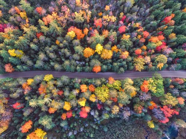 День осіннього рівнодення 2020 року: ритуали, традиції, прикмети