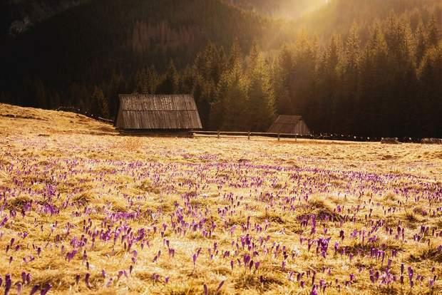 Польща гори