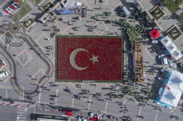 туреччина тюльпани
