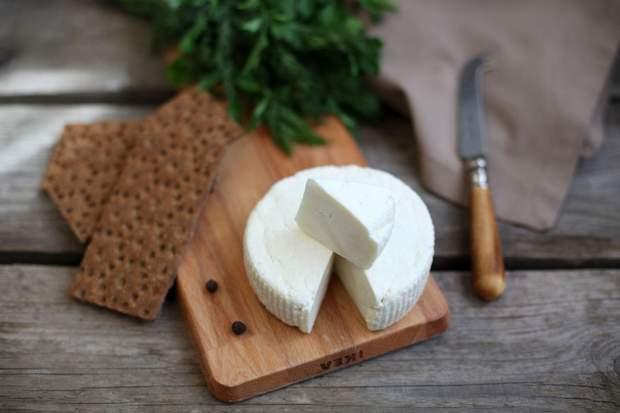 Властивості козячого сиру