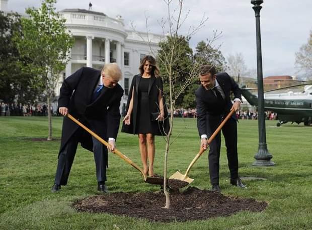 Еммануель Макрон та Дональд Трамп посадили дерево
