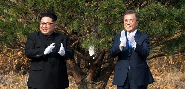 Лідери двох Корей садять дерево