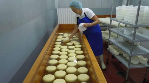 Процес виготовлення сиру