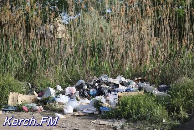Керч, пляж, сміття, Крим, окупанти, Росія, звалище