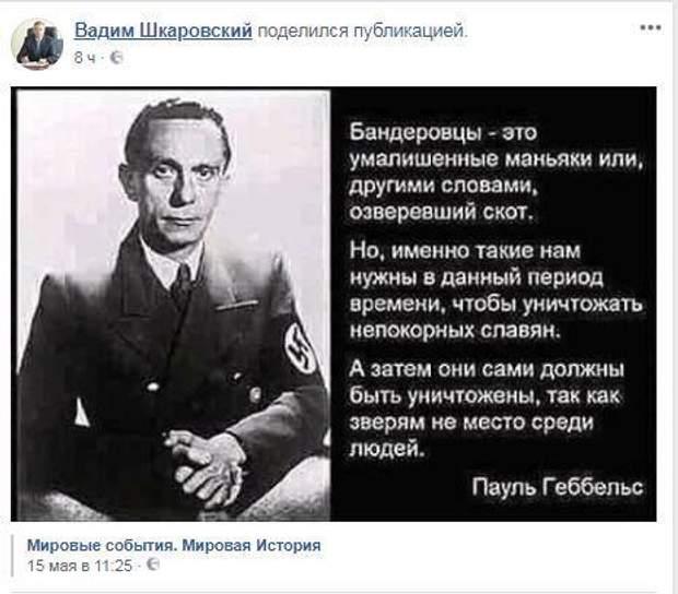 Геббельс, нацизм, бандеровцы, Опоблок, Шкаровский, история, скандал