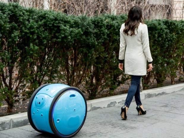 Роботизована валіза Gita