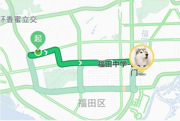 Xiaomi PetBit