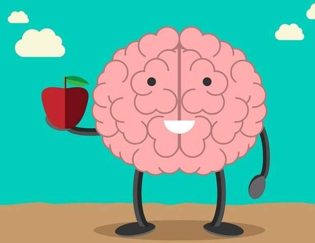 мозок їжа продукти