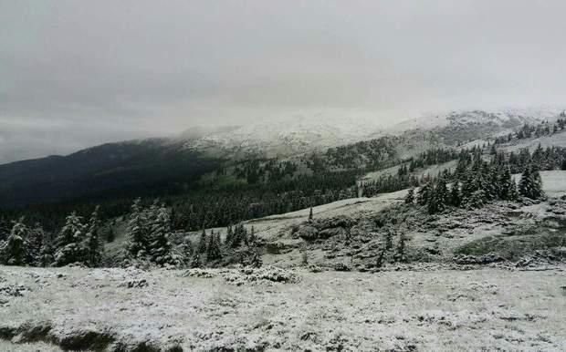 сніг Карпати