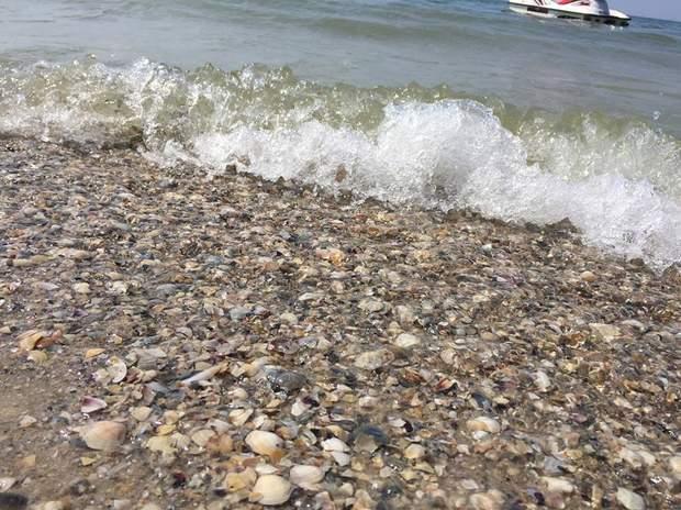 Море у Лазурному