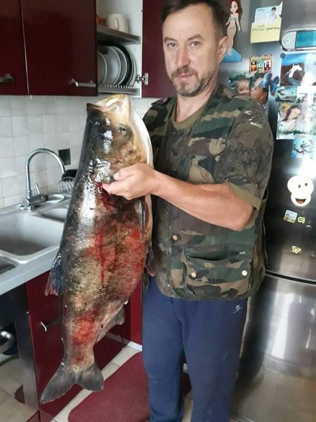Тернопільщина, риба, рекорд, 16 кілограмів, Лановеччина
