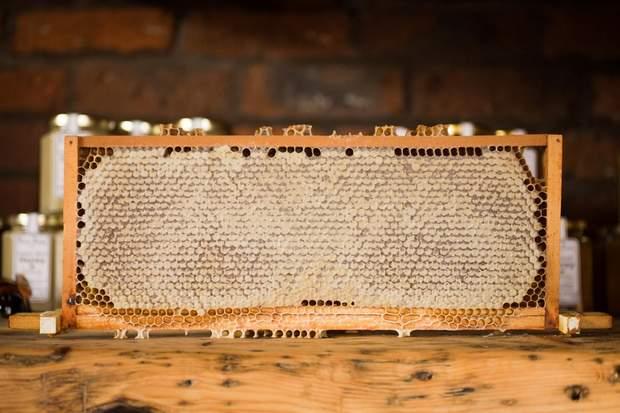 Мед корисний чи ні