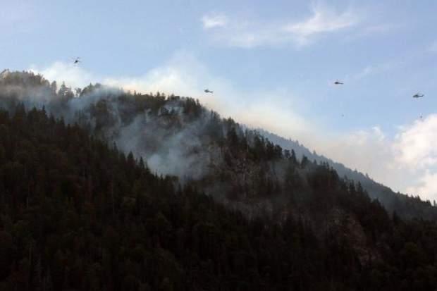 Лісові пожежі в Баварії