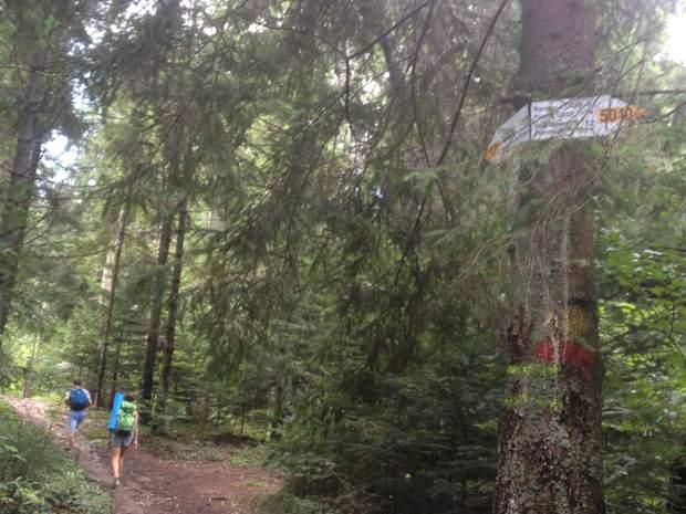 гори Карпати Парашка маркований маршрут