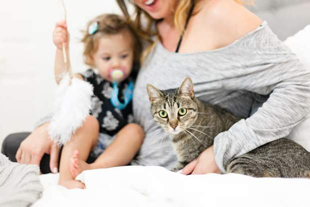 Варто заводити кота, коли дитині виповниться 3 роки