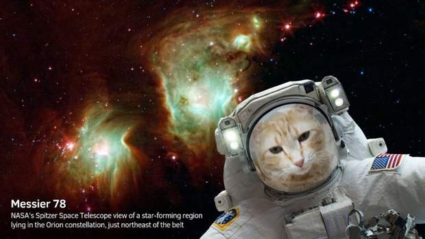 NASA презентувало додаток NASA Selfies