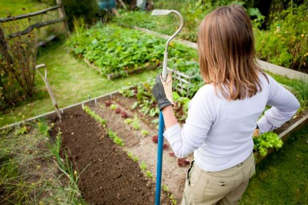 Чи може нашкодити здоров'ю агрофітнес
