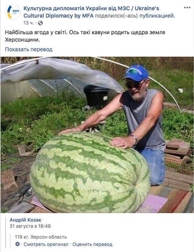 МЗС кавун фейк Херсон